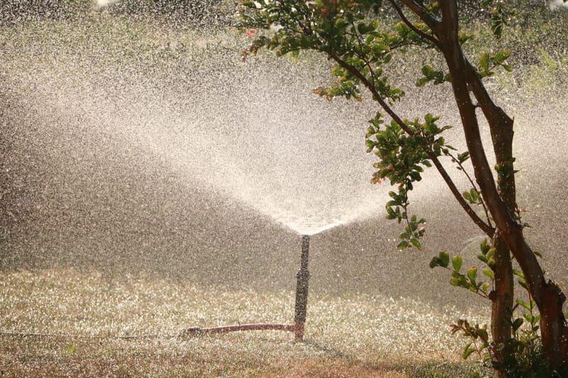 Sprinkler care