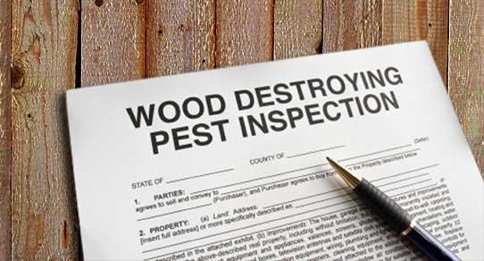 WDO (Termite) Inspections