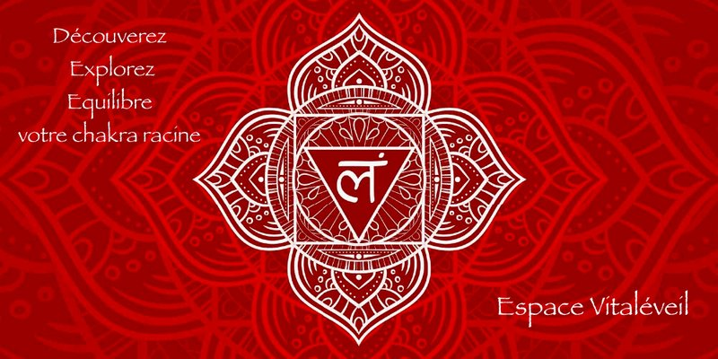 Je découvre, j'explore et j'équilibre mon chakra racine