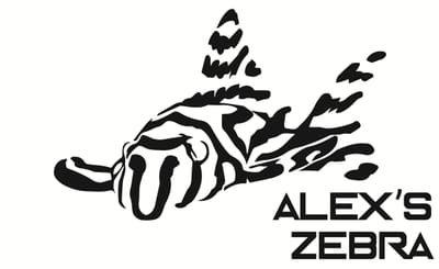 Alex's zebra