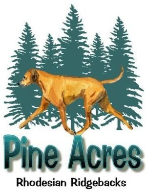 Pine-Acres-Rhodesian-Ridgebacks.com