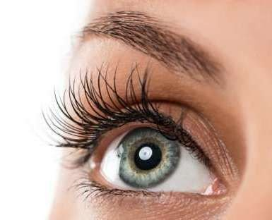 COMBI TREATMENT BROWS & LASHES AED 440