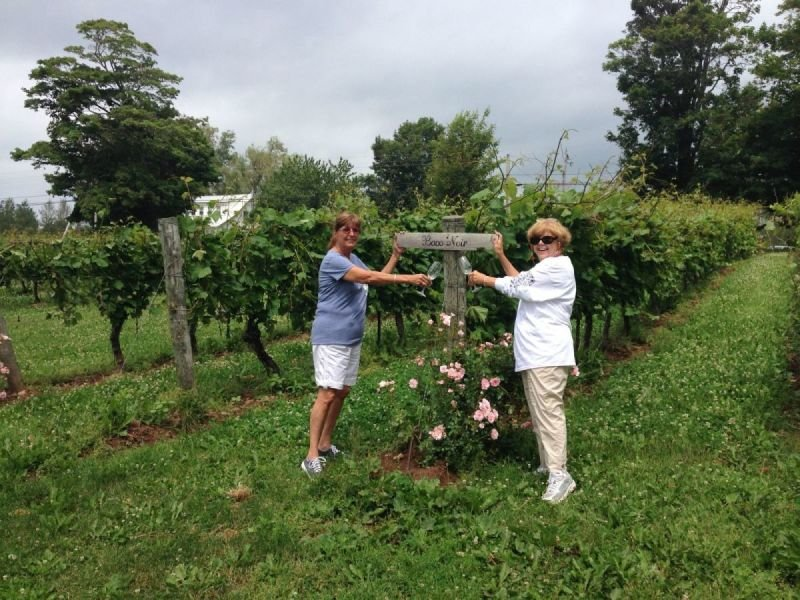 Annapolis Valley / Wine Tasting / Bay of Fundy