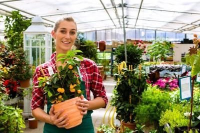 Considerations to Make When Hiring a Flower Delivery Service