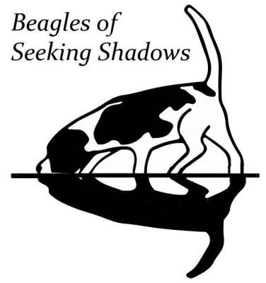 Beagles of Seeking Shadows