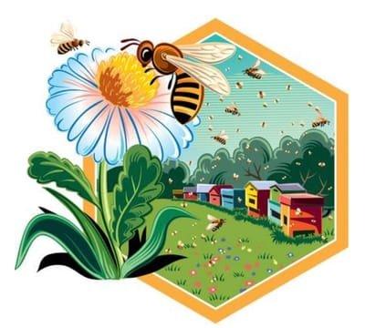 Australian Healing Honeys