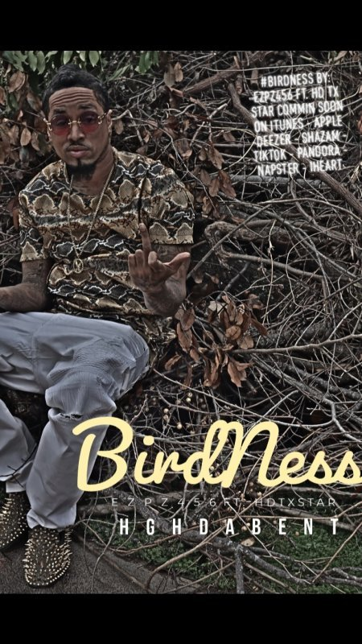 """BirdNess"""