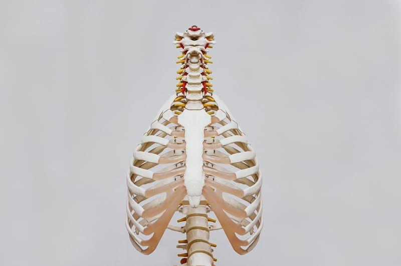Cosa tratta l'osteopatia:
