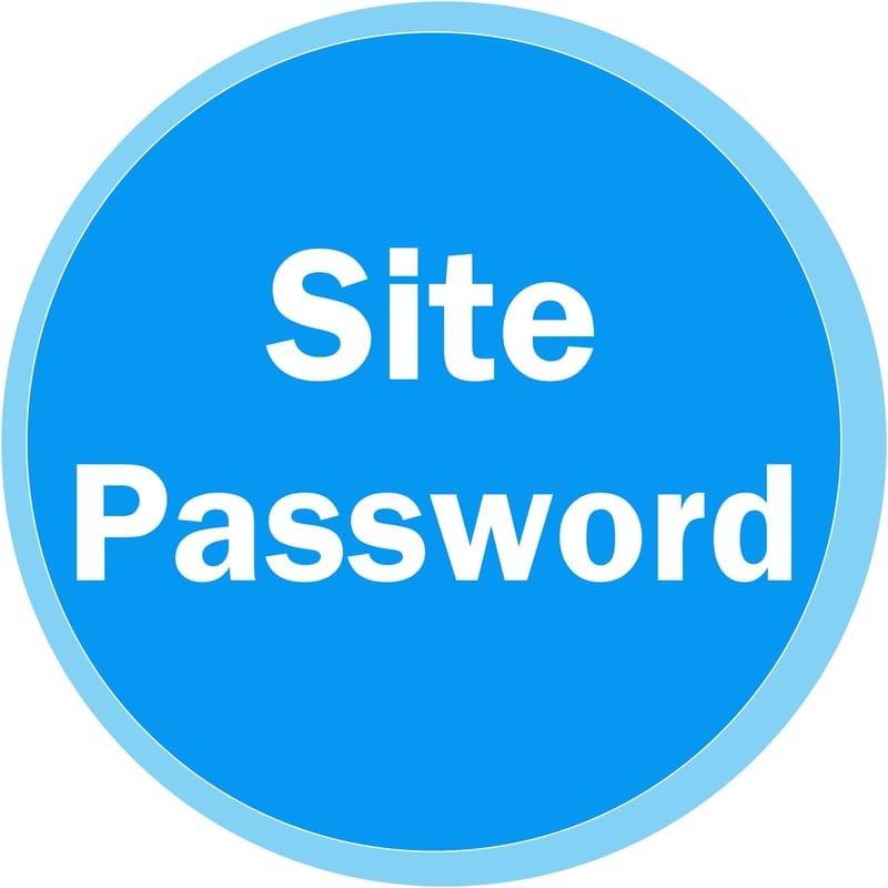 Website Password