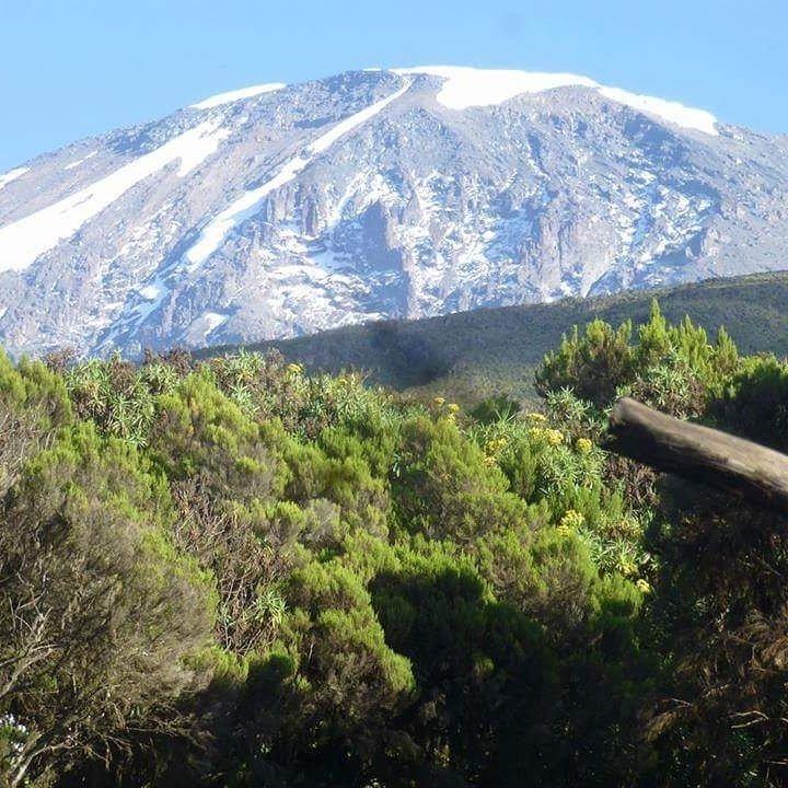 Восхождение (тур) на Килиманджаро 5895-  2021, Танзания, Африка с русским гидом, Программа тура, расписание заездов, стоимость (цена) тура