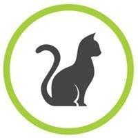 Pet Sit Services