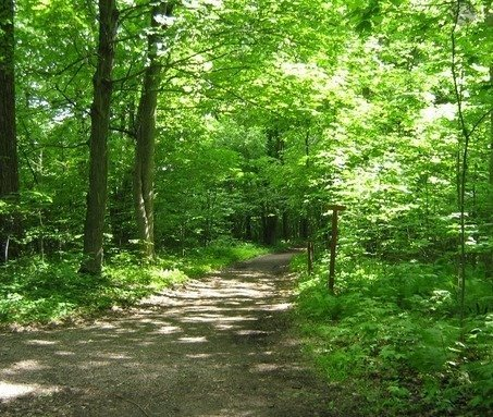 Sentier de randonnée