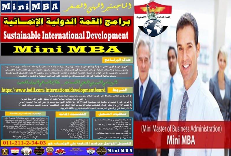 Sustainable International Development _ Mini MBA