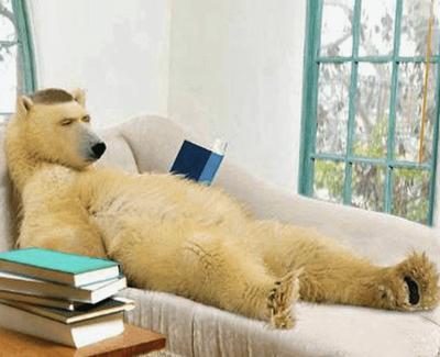 Buy Direct from Bear Books in Australia