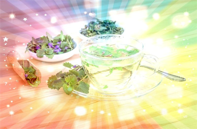 Herbal Courses-Online