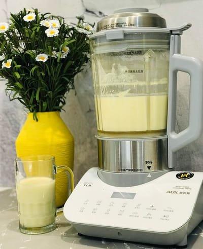 Máy Làm Sữa Hạt AUX