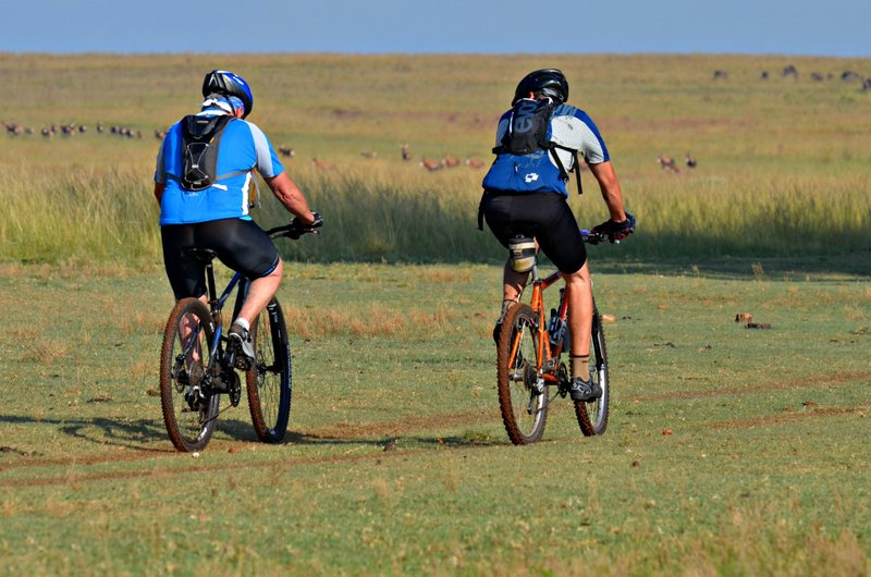 Wildebeest Route