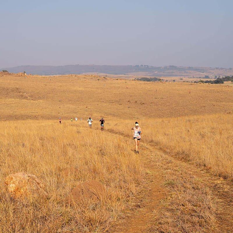 Meerkat Route