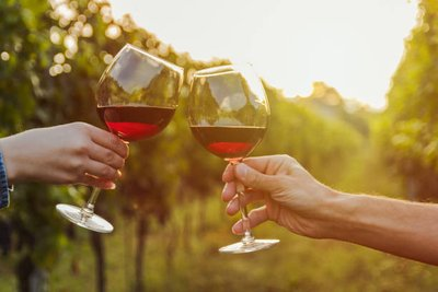 Features to Observe while Choosing a  Wine Tours company