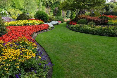 Why We Need the Top Rated Landscaping Services