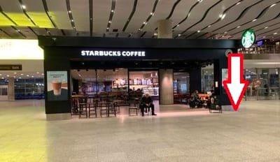 St Petersburg Airport Arrival Information